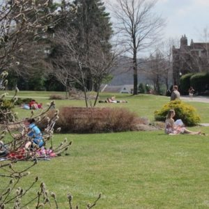 campus spring day