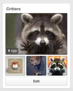 Critters Pinterest Board